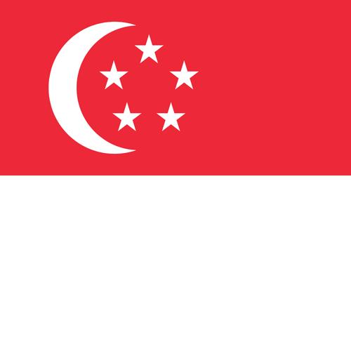 Singapore flag round small